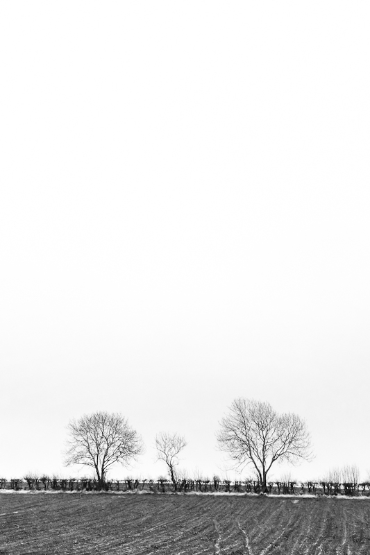Landscape-Photography-Northern-Ireland-Loughgiel-Minimalism-1