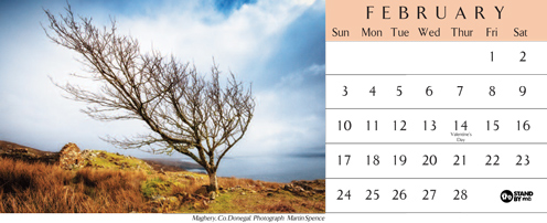 Northern_Ireland_Landscape_Photography_Desktop_Calendar_2013_February_Maghery