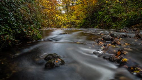 Glenoe-Autumn-Northern Ireland Landscape Photographer-3