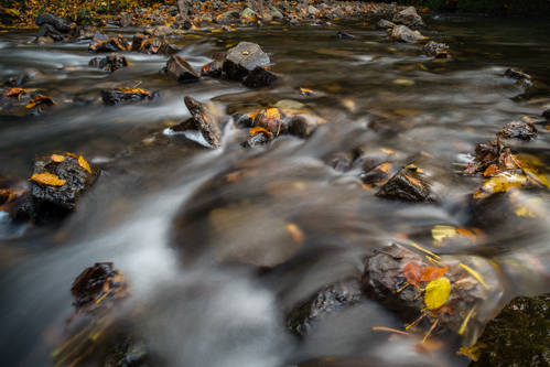 Glenoe-Autumn-Northern Ireland Landscape Photographer-4